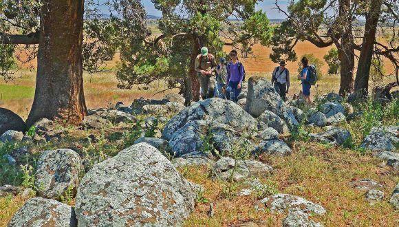 DSC1625 Middledale Gabbroic Diorite outcrop